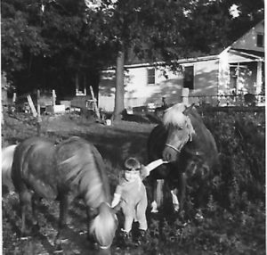 Marsha Morlan as a little girl and two ponies.