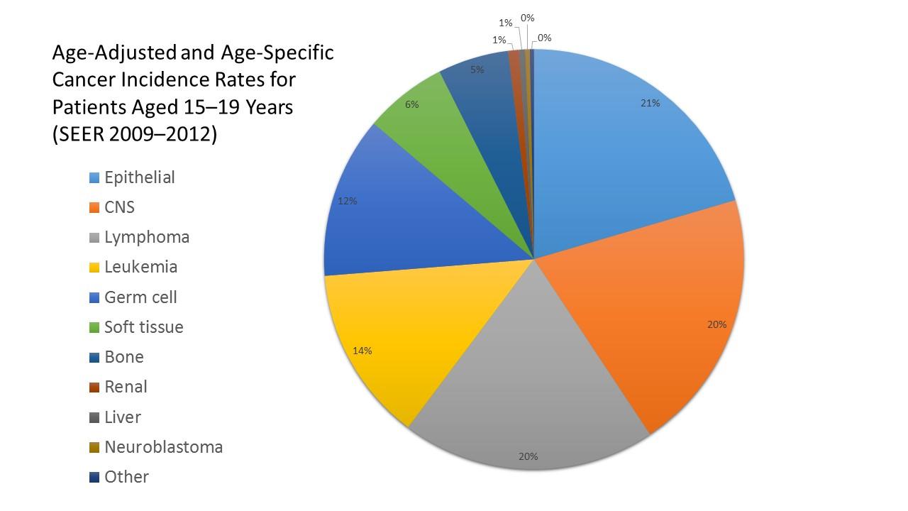 Unusual Cancers Of Childhood Treatment Pdq 174 Health